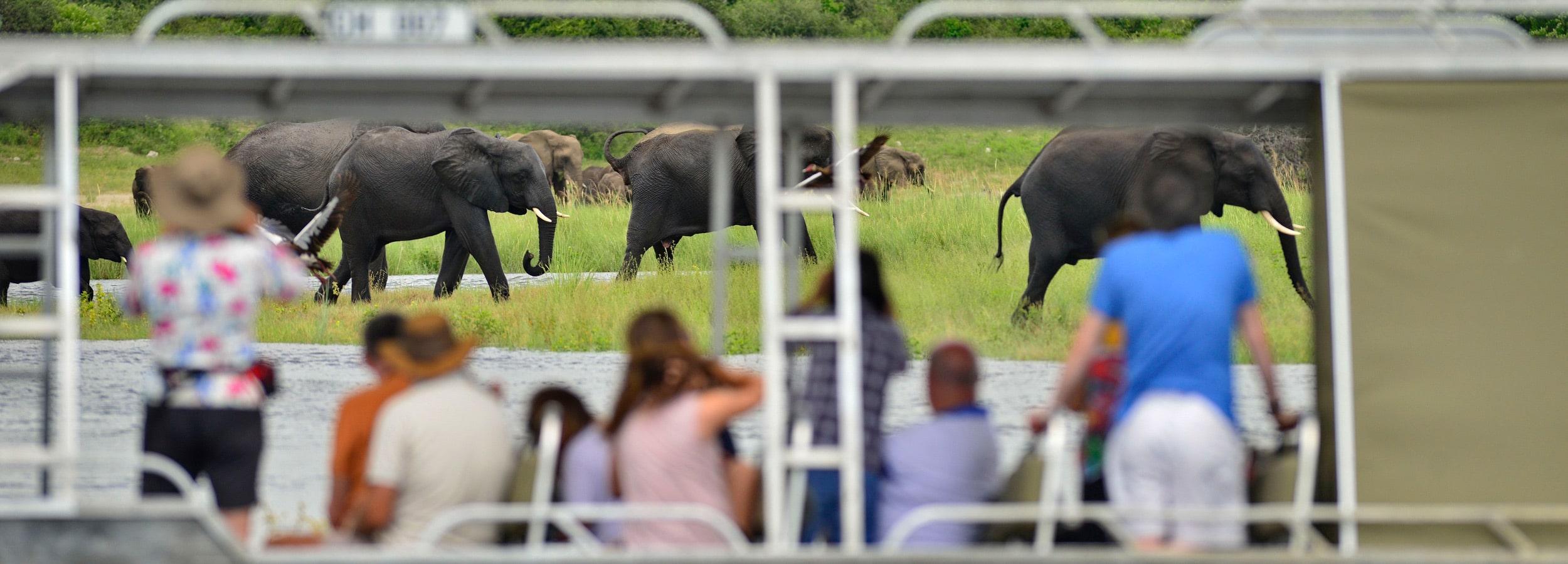 Safari mit besten Aussichten versprechen Flusskreuzfahrt-Incentives auf dem Sambesi River in Botswana.